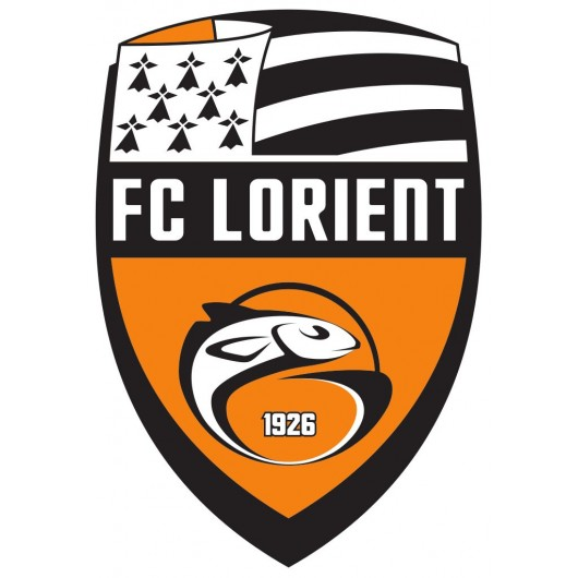 Patch logo fcl
